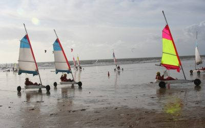 WEEK-END CHAR A VOILE